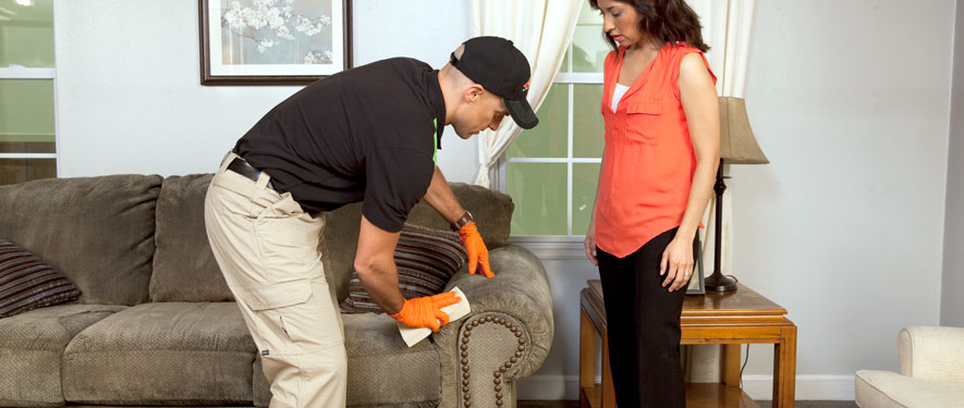 Helotes, TX carpet upholstery cleaning
